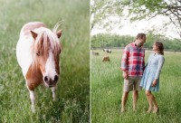 indiana engagement session with dogs and horses_0004