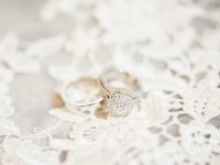 fall cafe brauer wedding chicago wedding photographer_0001